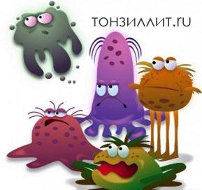 Вездесущие микробы